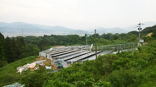 KIMG0288